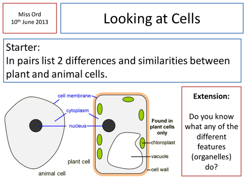 Cheek cells practical by danielle21711 teaching resources tes ccuart Images