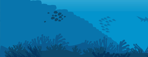 Shoebox habitats: Under the sea