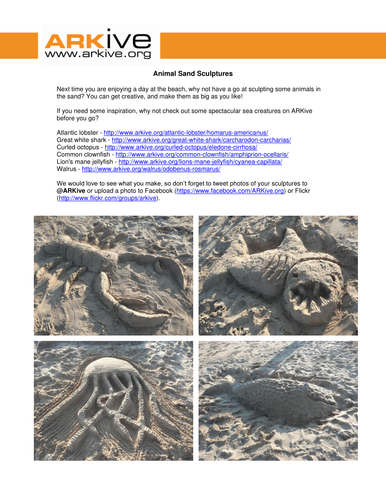 Animal Sand Sculptures