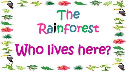 Rainforest Poetry