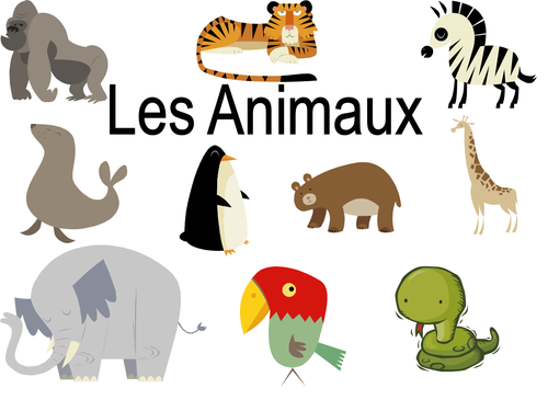 les animaux domestiques by lolaantic uk teaching. Black Bedroom Furniture Sets. Home Design Ideas