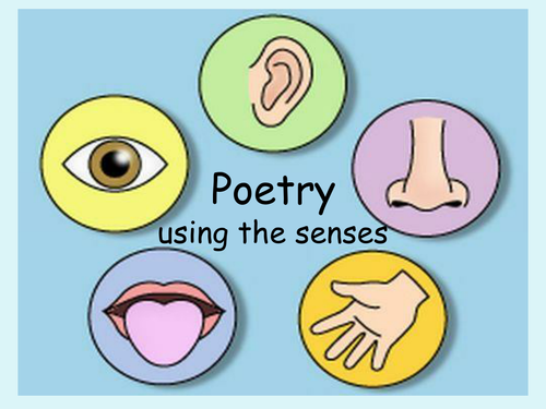 Poetry unit 1 using the senses powerpoint by Anon34486539601324256 ...