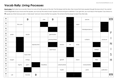 Vocab Rally Game - Template & Examples