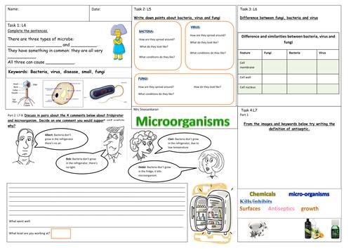 Microorganism By Svinthiya Teaching Resources