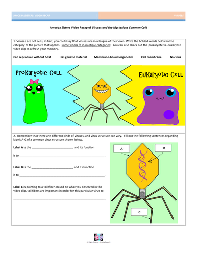 Viruses Worksheet Key - Stay At Hand