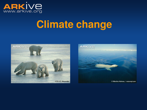 Climate Change