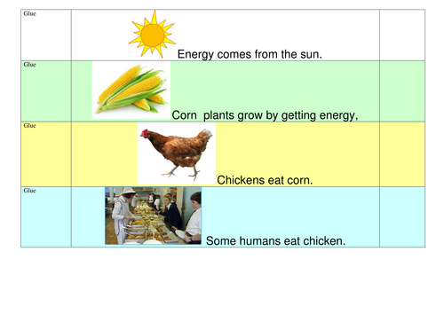 Food Chain Activity Sheet By Bobthemilky Teaching Resources Tes