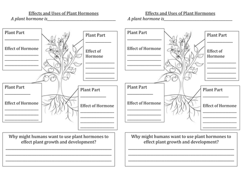 Effects and Uses of Plant Hormones
