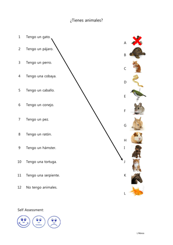 Los Animales by leiamaras - Teaching Resources - Tes