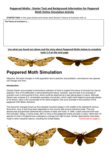 Peppered Moths interactive online lesson by peggylu - Teaching ...