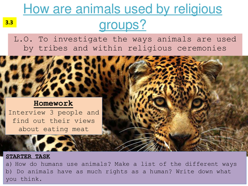 How are animals used by humans