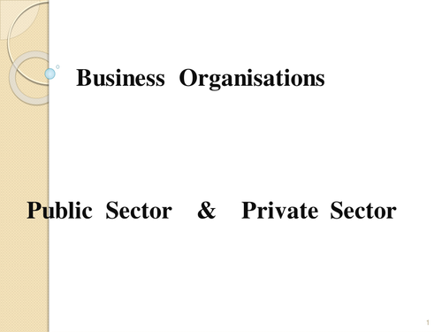 PPT - Business  Org. - public / private sector