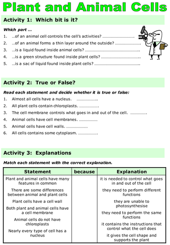 Ks3 Revision Animal Plant And Specialised Cells 6425291 on Grade 4 Science Animal Reproduction Worksheet