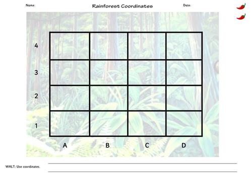 Rainforest Coordinates - slides, and sheets