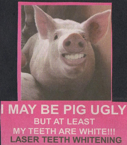 Image - Body Image : Pig yes but beautiful teeth