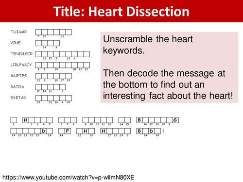 Heart Dissection Lesson by Laura606 Teaching Resources Tes – Heart Dissection Worksheet