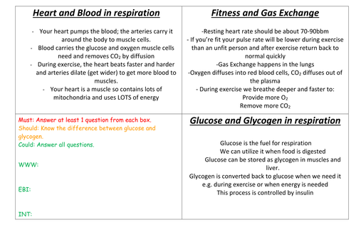 Aerobic respiration and exercise by zuba102 Teaching Resources Tes – Aerobic Respiration Worksheet