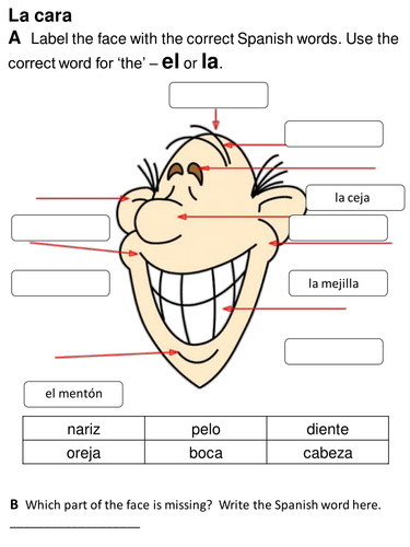 Face and parts of the body - Spanish Y4 by rhawkes | Teaching Resources
