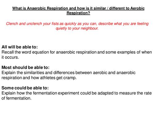 Aerobic Anaerobic Respiration by karenshaw Teaching Resources – Fermentation Worksheet