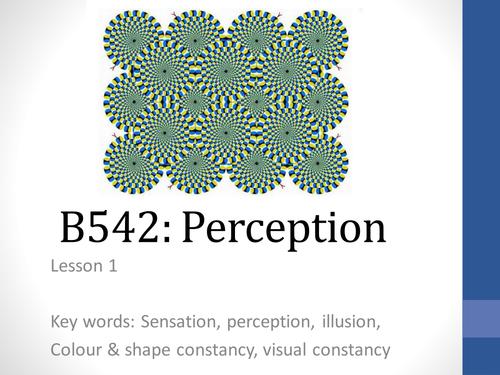 B542 Perception series of lessons