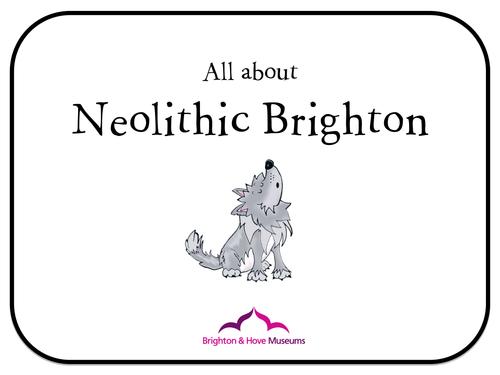 Brighton Museum Neolithic