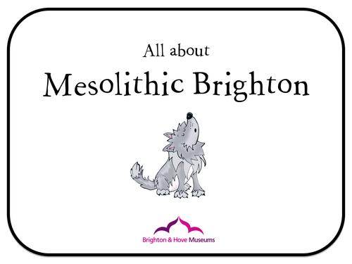 Brighton Museum Mesolithic