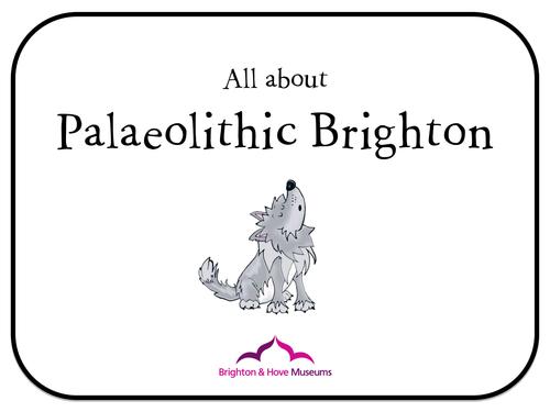 Brighton Museum Palaeolithic