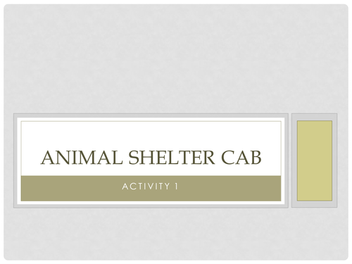 Animal Shelter CAB Activity 1 Guide