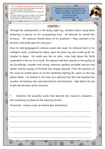 Year 5 reading comprehension worksheet by hilly100m | Teaching Resources