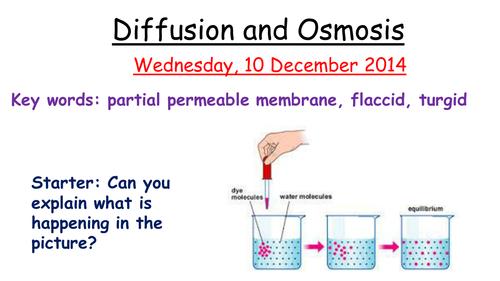 Osmosis AQA B3