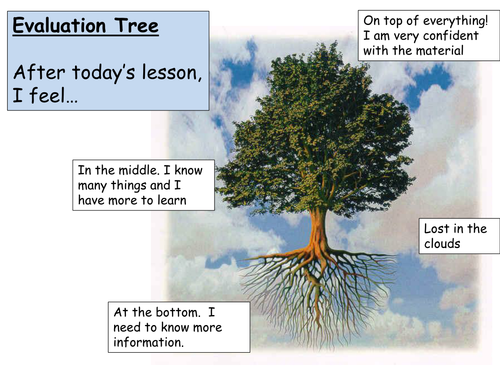 Evaluation Tree