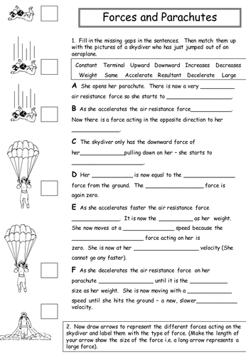 life of mammals a winning design worksheet answers