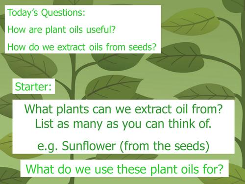 Extracting plant oils
