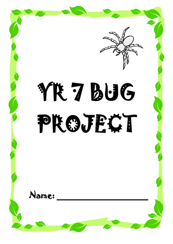 Bug Project & Sewing Skills