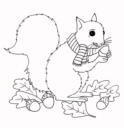 Fall - Squirrel Coloring Page