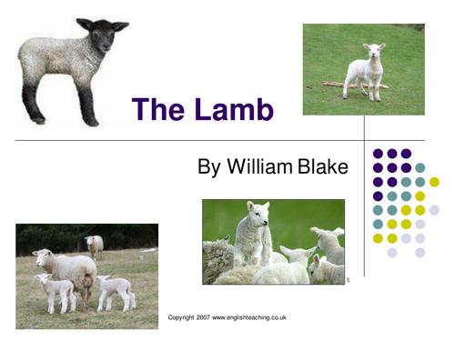 Skellig - Blake - Compare - Tyger - Lamb