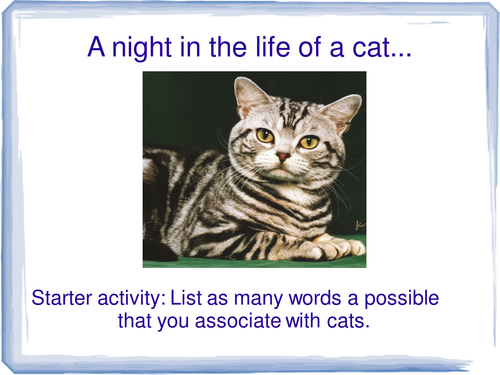 A night in the life of a cat: descriptive writing