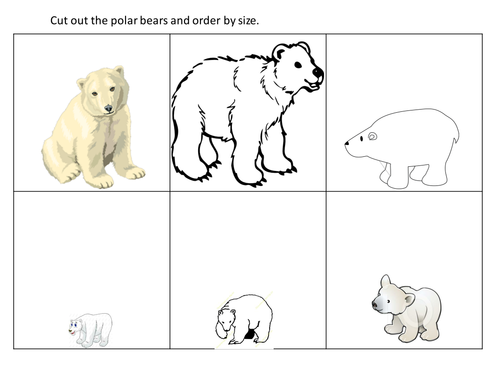 Polar bears for ordering by size