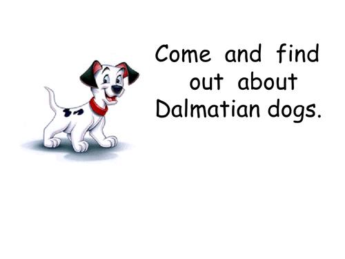 dalmatian dogs PowerPoint
