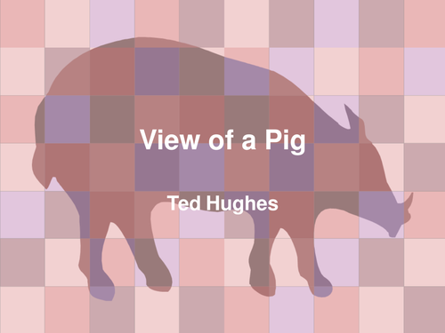 Ted Hughes' View of a Pig