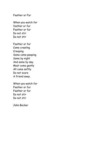 Minibeast Poems