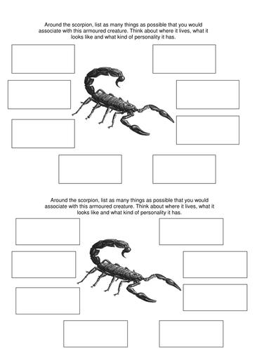 Night of the scorpion starter activity