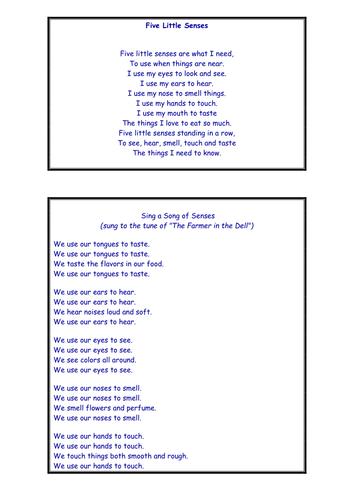 5 Senses Poems