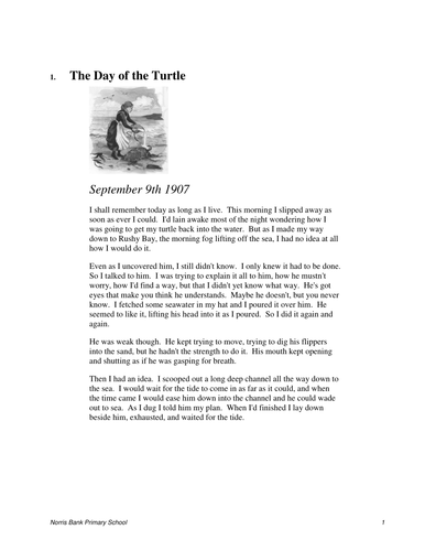 Day of the turtle Reading Test
