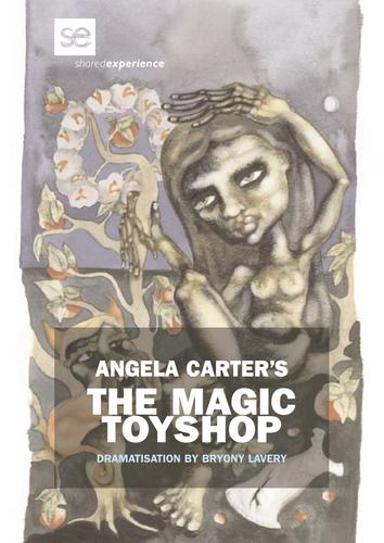 The Magic Toyshop (2011) - Education Pack