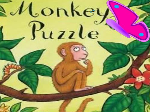 Monkey Puzzle story