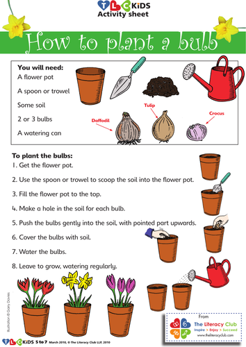 how to plant a bulb by tlchelen teaching resources. Black Bedroom Furniture Sets. Home Design Ideas