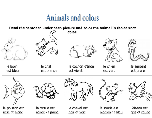 spanish colors adjectives with animals worksheet by suesummersshop us teacher lessons tes. Black Bedroom Furniture Sets. Home Design Ideas