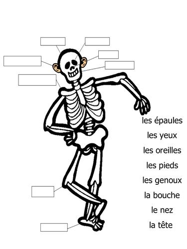 Printables Skeleton Labeling Worksheet skeleton labeling worksheet bloggakuten label bloggakuten