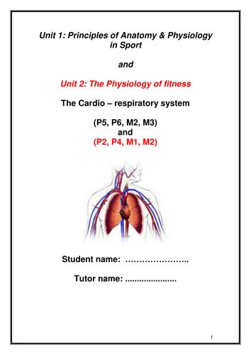 Cardio respiratory workbook/assignment